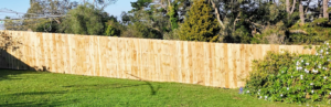fence (5)